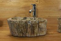 waschbecken aus versteinertem holz bafh47n ein unikat im bad. Black Bedroom Furniture Sets. Home Design Ideas